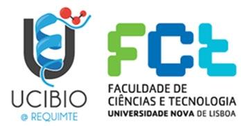Dr. Catarina Roma-Rodrigues, Postdoctoral Fellow FCT-NOVA, Universidade NOVA de Lisboa