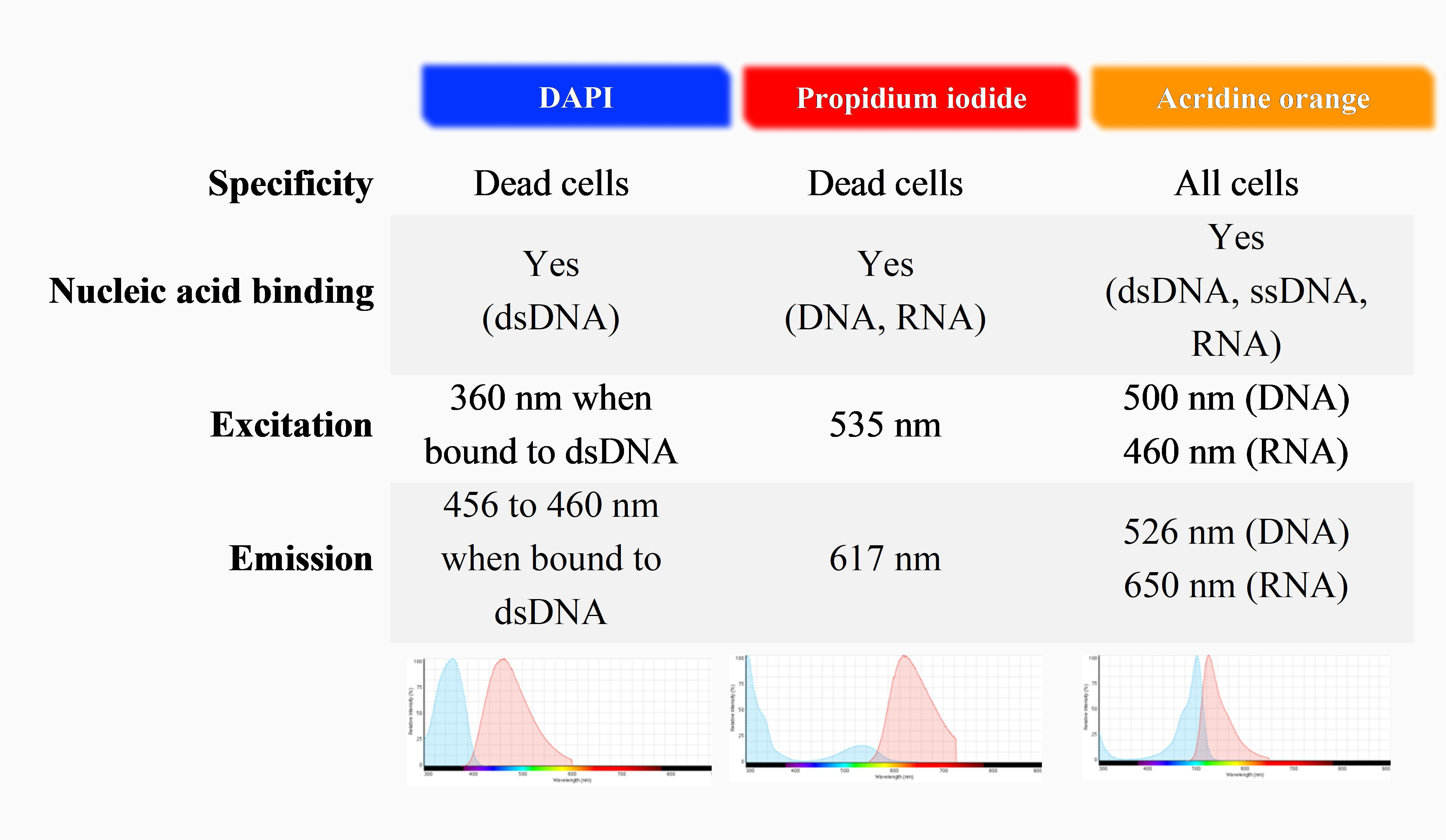 Characteristics of common fluorescence staining used for live/dead and total cell number counting